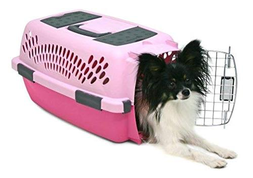 Aspen Porter Pet Carrier with Colors