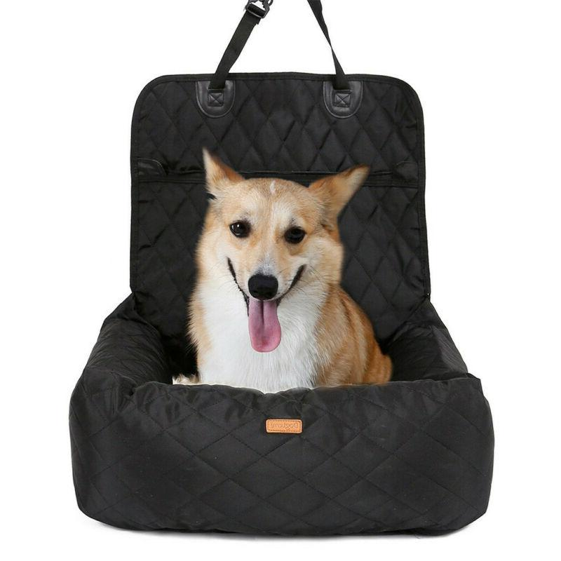 Dog for for Small and Dogs