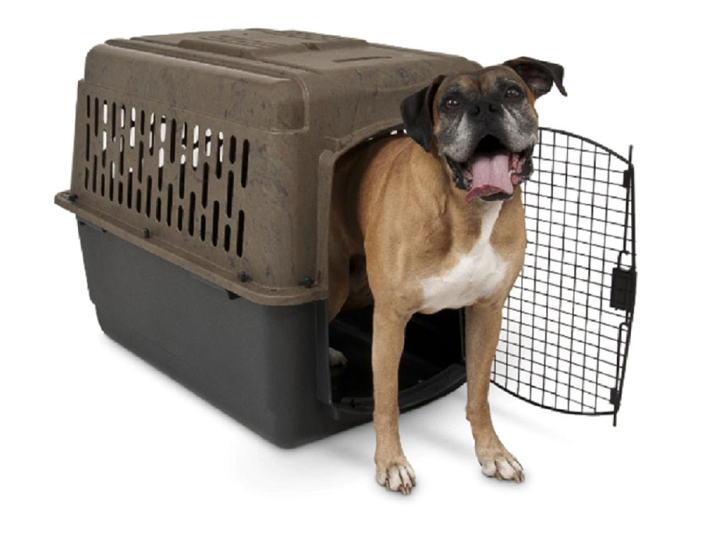 dog crate carrier kennel camouflage pet porter