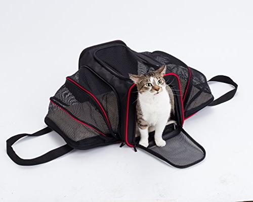 mypal Expandable Soft Carrier, Carrier for Easy On Luggage. for Small Puppies, More!