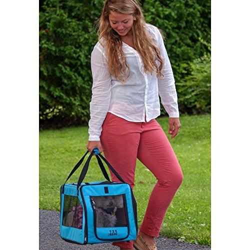 Pet Soft Travel in Blue